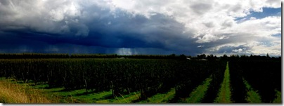 storm pano small-1