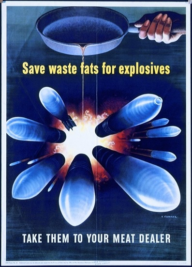 Save Fat Poster