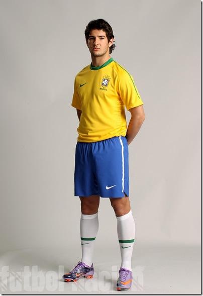 brazil nike 2010