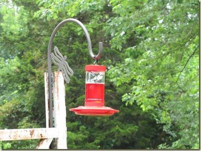 Birdfeeder07-05-10b