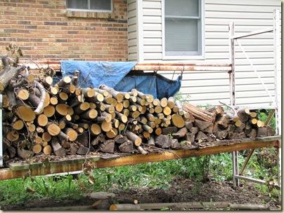 woodpile07-05-10