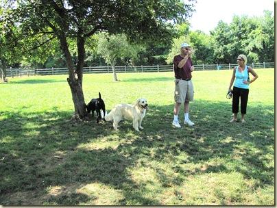AlumCreekdoggiepark07-23-10d
