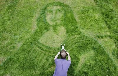 Mona lawn