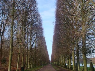Palácio de Versalhes - Bosque
