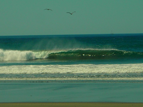 Costa Rica Surf Wave