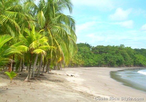 Costa Rica Deserted Beach 4