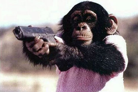 monkey will throw down at a moment's notice to avenge you.