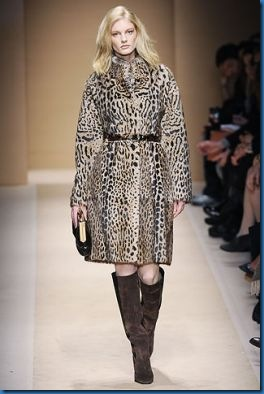Gucci animalier photos_5