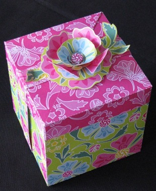 2011 02 11 LRoberts Cupcake Box Green