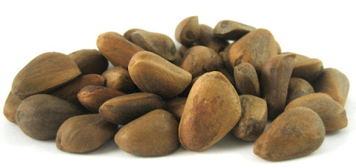 кедровые орехи хранение обработка польза