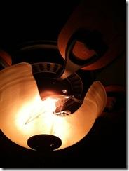 3.22.2010 Broken Light