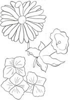 flores_58
