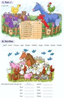 animals   numbers   colours