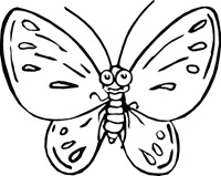 jyc mariposas (3)