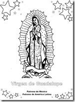 patrona de mexico 1