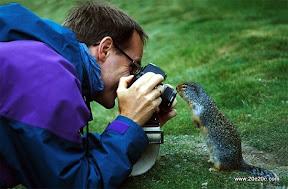 عکسهای باحال و بانمک حیوانات