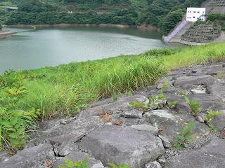天端よりダム湖側の堤体を望む