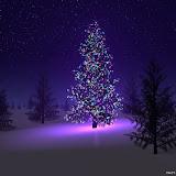 ChristmasTree-blue (4).jpg