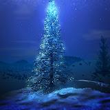ChristmasTree-blue (3).jpg