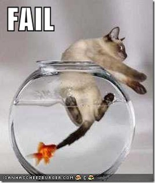 funny-picture-cat-fail