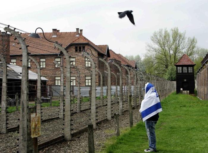 Auschwitz (27)