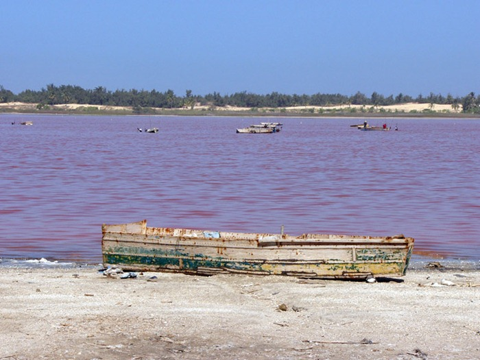 pink-lake-retba (18)