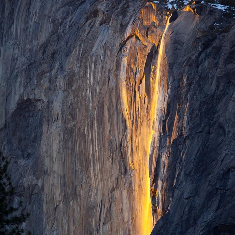 Mesmerizing Yosemite Horsetail Firefall