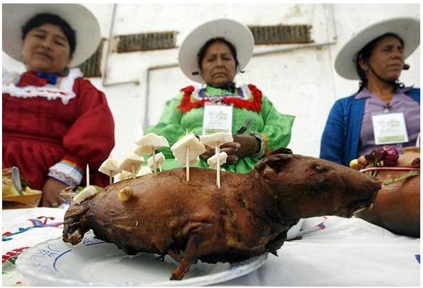 guinea-pig-festival (6)