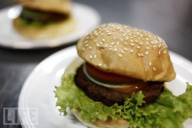 snake-burger (1)