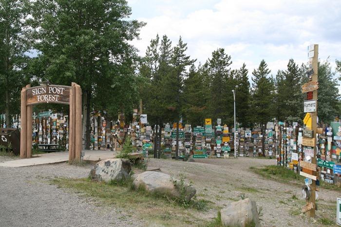 sign-post-forrest (1)