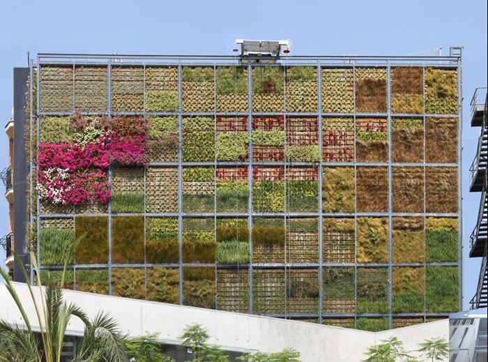 vertical-garden (4)
