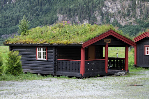 Green Roof Norway (4)