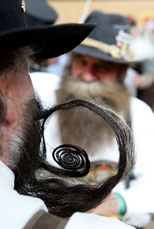 beard-championship (2)