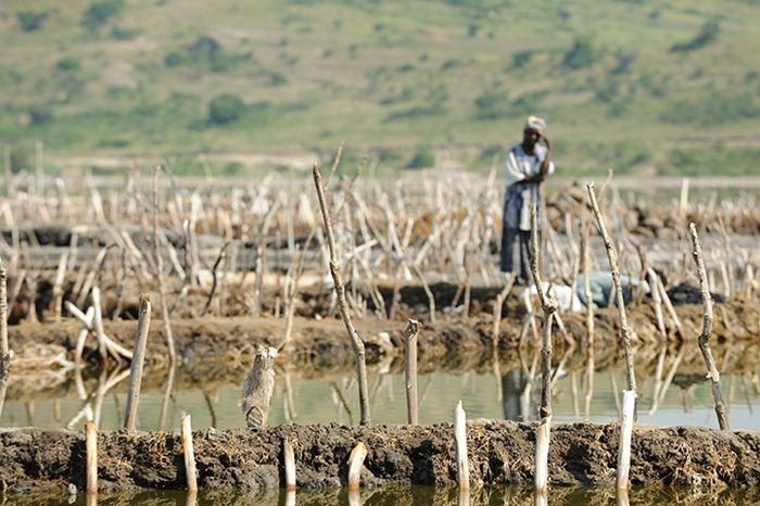 uganda-salt-miners (10)