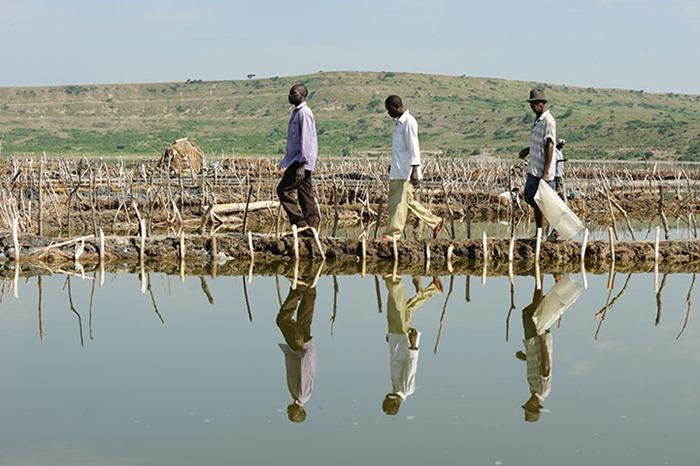 uganda-salt-miners (3)