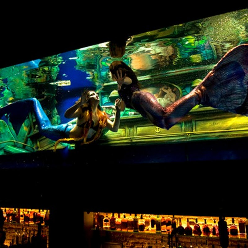 Mermaid Bar at Sacramento