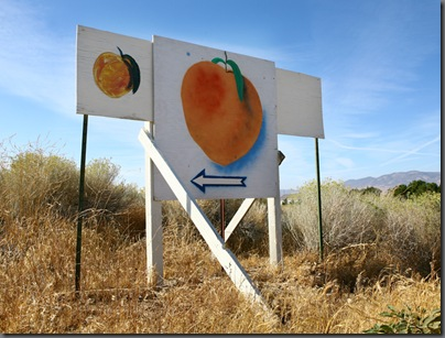other peach sign web