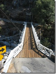 mosquito suspension bridge 2