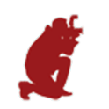 Belgrade Walker icon
