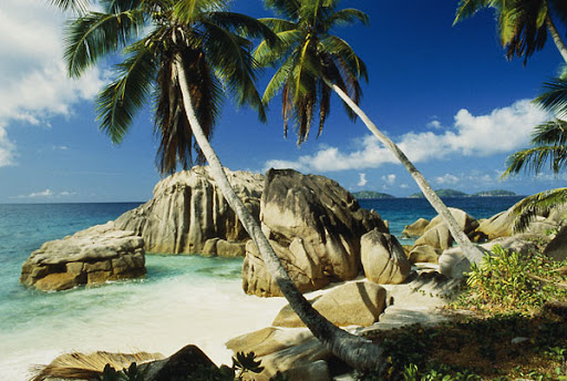 A picture of one of a splendid Seychelles beaches