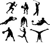 nuevas titulaciones deportivas en pádel 2011 articulo