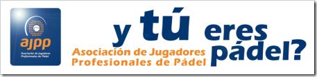 Ajpp logo 2011 eslogan