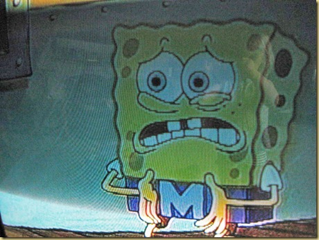spongebog