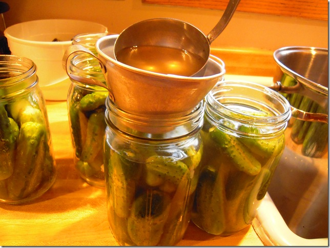 pickles 021