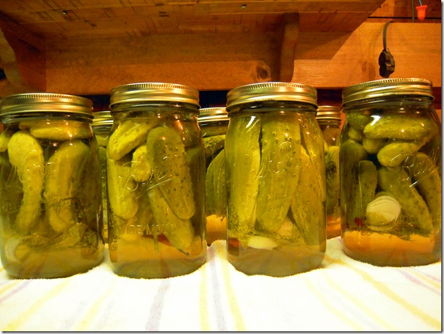 pickles 028