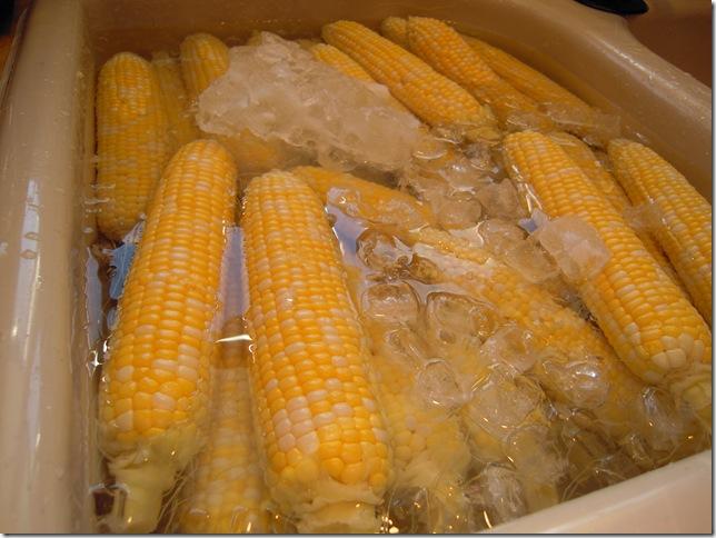 corn 006