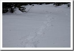 Snowshoeing-20
