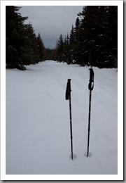 Snowshoeing-23