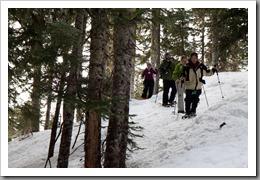 Mt Hood Snowshoeing-111