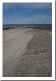 White Bluffs Hike-193